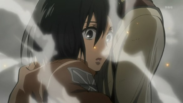 AOA Mikasa